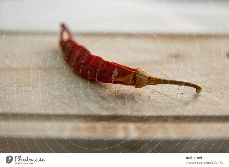 Chili oder Peperoni liegt auf altem Holzbrett Kräuter & Gewürze Schote Lebensmittel scharf Ernährung Schneidebrett braun rot Scharfer Geschmack Falte getrocknet