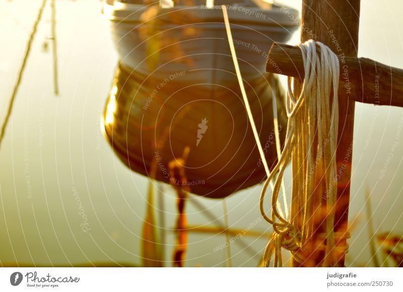 Hafen Umwelt Natur Landschaft Wasser Schönes Wetter Küste Seeufer Ostsee Bootsfahrt Fischerboot Wasserfahrzeug warten natürlich Stimmung Idylle ruhig