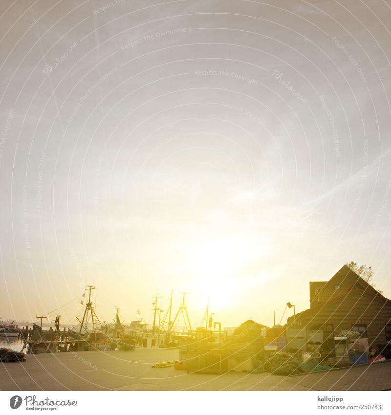maasholm Wasser ruhig Arbeit & Erwerbstätigkeit Güterverkehr & Logistik Hafen Beruf Gelassenheit Wirtschaft Handel Vorsicht Fischereiwirtschaft Fischer Feierabend Fischerboot Schleswig-Holstein