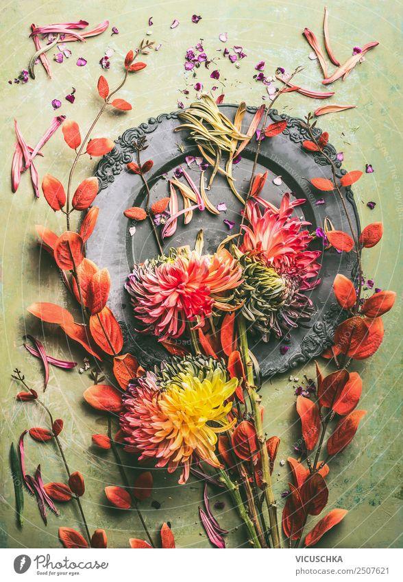 Herbst Blumen und Zweige mit roten Blättern , Stillleben Design Dekoration & Verzierung Feste & Feiern Blatt Blüte Blumenstrauß Composing Chrysantheme