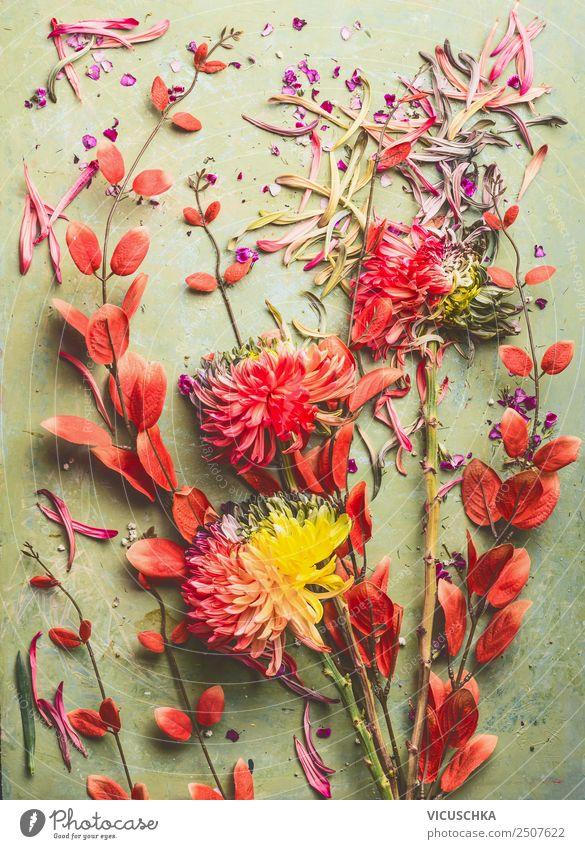 Blumen Stillleben mit Chrysanthemen und roten Zweigen Design Sommer Dekoration & Verzierung Feste & Feiern Natur Pflanze Herbst Blatt Blüte Blumenstrauß