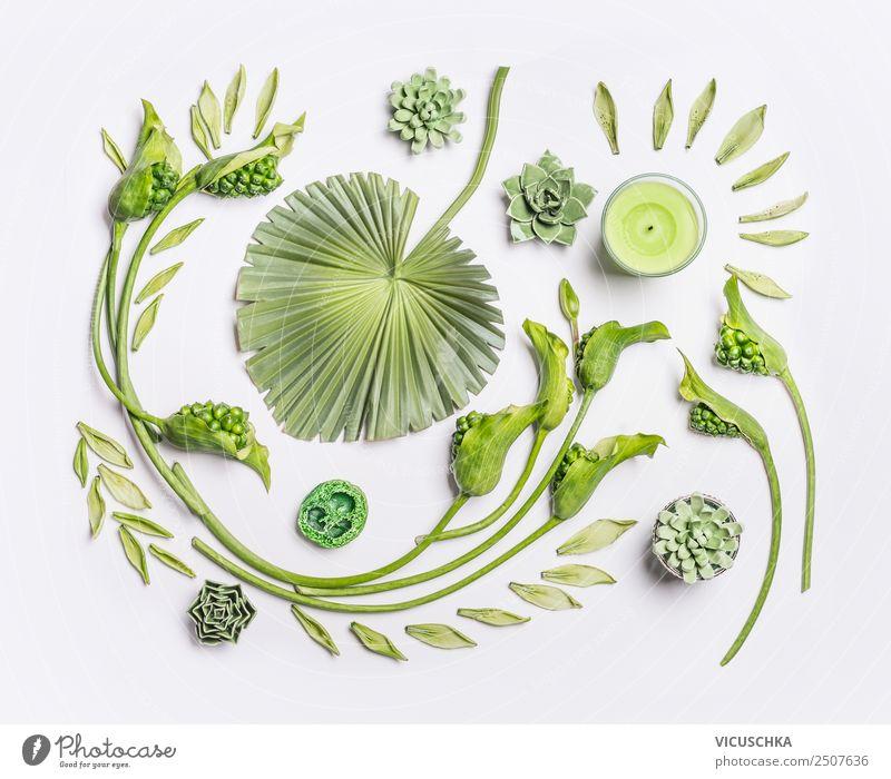 Grüne Blumen und tropische Blätter auf weiß Stil Design Wellness Spa Sommer Natur Pflanze Blatt Blüte Dekoration & Verzierung Ornament Hintergrundbild Entwurf