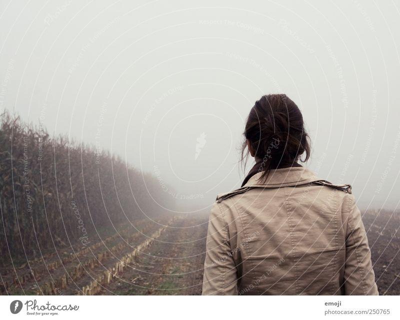 Sherlocke Holmes Junge Frau Jugendliche 1 Mensch 18-30 Jahre Erwachsene Umwelt Natur Erde Herbst schlechtes Wetter Nebel Feld braun grau Nebelbank Nebelschleier
