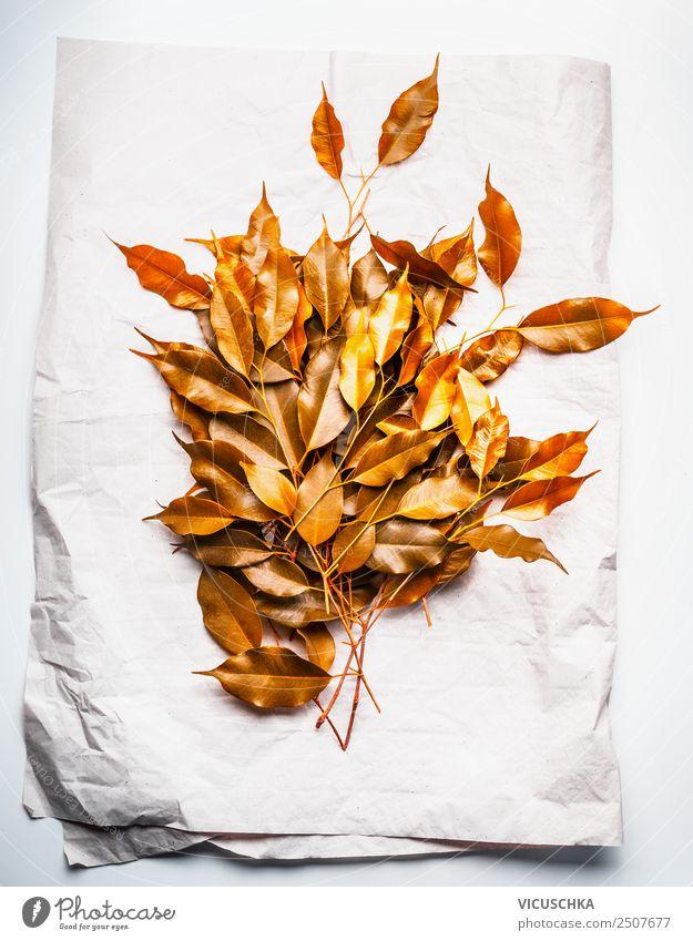 Goldene Herbstlaub für Dekoration auf Papier Stil Design Dekoration & Verzierung Natur Luftballon Blumenstrauß gelb gold orange Tisch Farbfoto Studioaufnahme