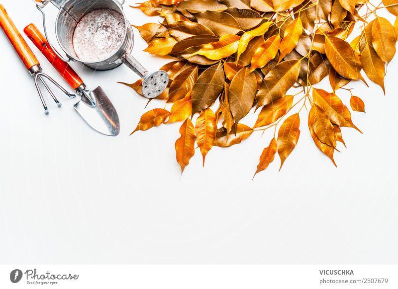Herbstlaub mit Gießkanne und Gartengeräten Stil Design Freizeit & Hobby Häusliches Leben Natur Blatt gelb Hintergrundbild Gartenarbeit Schaufel