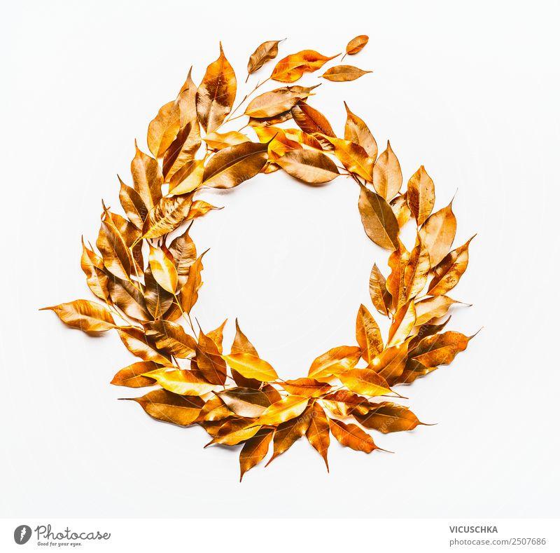 Herbst Blätter Kranz auf weiß Stil Design Natur Pflanze Blatt Dekoration & Verzierung Ornament gelb gold Hintergrundbild Entwurf Vor hellem Hintergrund