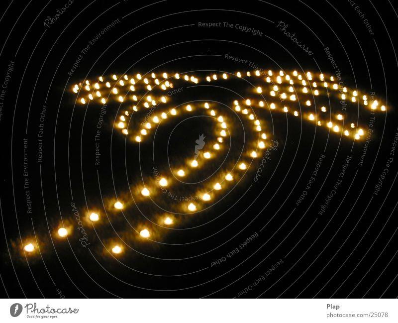 Lichterfest Teelicht Palme dunkel leuchten