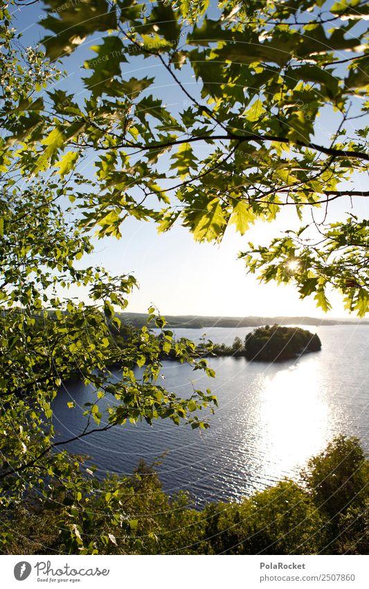#A# Grünes Idyll Umwelt Natur Landschaft Pflanze Schönes Wetter Wald ästhetisch Idylle grün Waldrand Waldsee See abgelegen wandern ruhig Farbfoto mehrfarbig