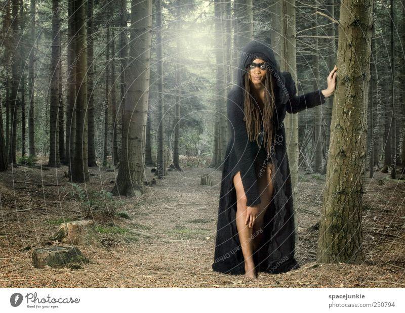 the wolf Mensch Frau Jugendliche schön Baum schwarz Erwachsene Wald Landschaft feminin Gefühle Stimmung außergewöhnlich Sträucher 18-30 Jahre beobachten