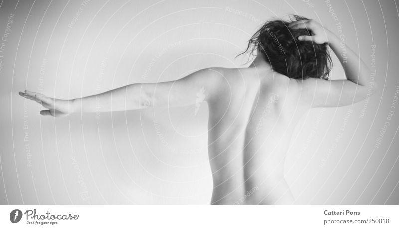 stretching Frau Mensch Jugendliche schön Erwachsene feminin nackt Bewegung Gesundheit Körper Rücken natürlich Aktion stehen einzigartig weich