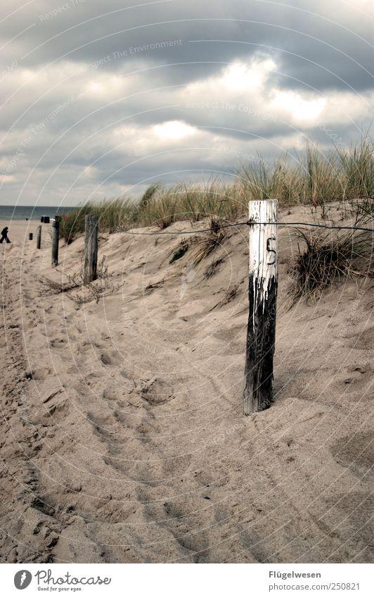 Vielleicht wird es nur Herbst damit ich den Himmel wieder sehe Meer Strand grau Gras Glück Regen Wetter Wind Nebel Klima Stranddüne Sturm Düne Unwetter Gewitter schlechtes Wetter