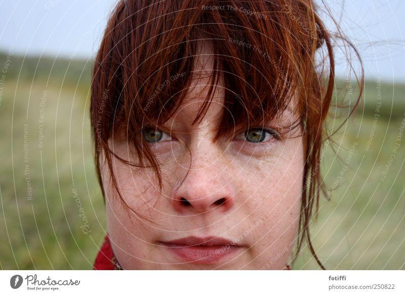 windkind feminin Junge Frau Jugendliche Haut Kopf Haare & Frisuren Gesicht Auge Nase Mund 1 Mensch 18-30 Jahre Erwachsene authentisch Kraft Sommersprossen