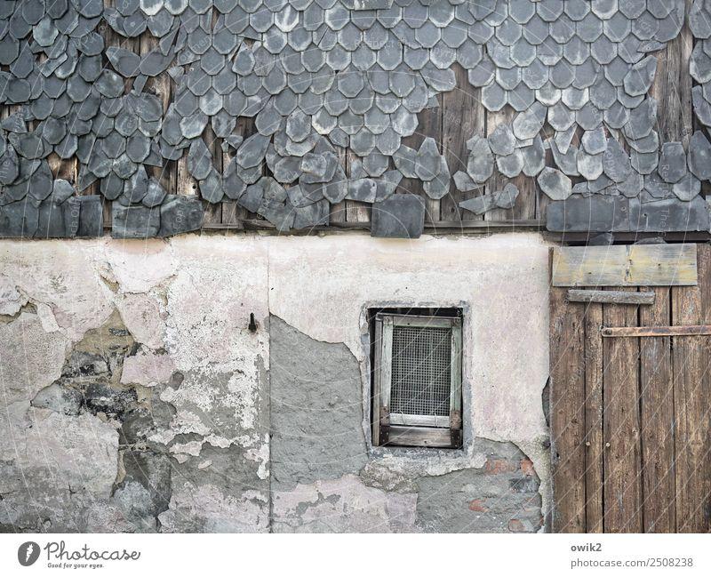 Abgewohnt alt Haus ruhig Fenster Wand Mauer Fassade Tür trist Vergänglichkeit kaputt historisch Vergangenheit Gelassenheit Verfall verfallen