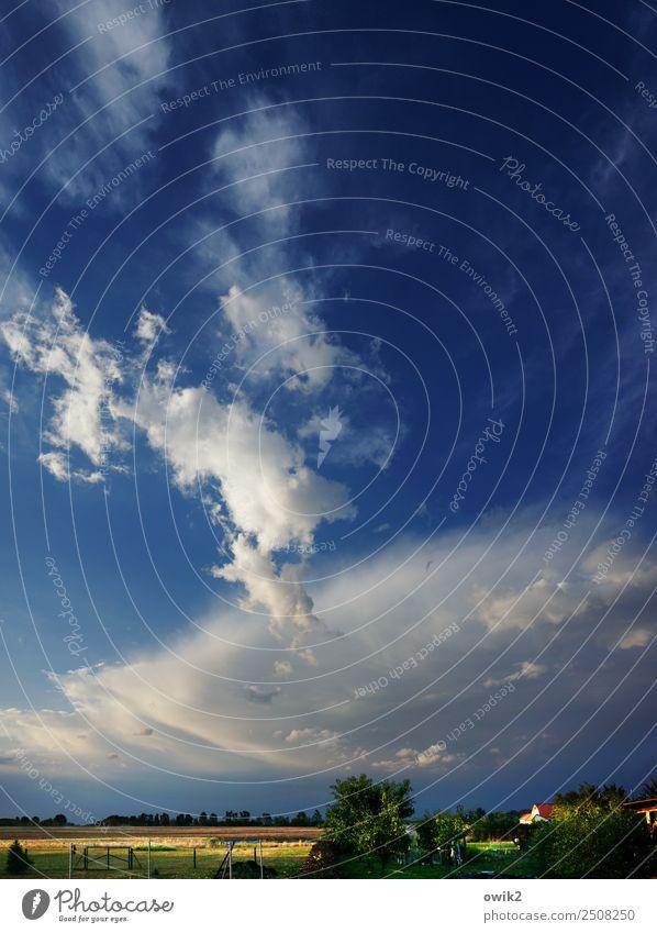 Nach dem Gewitter Umwelt Natur Landschaft Pflanze Luft Himmel Wolken Horizont Sommer Klima Schönes Wetter Baum Gras Sträucher Dorf Haus Ferne gigantisch groß