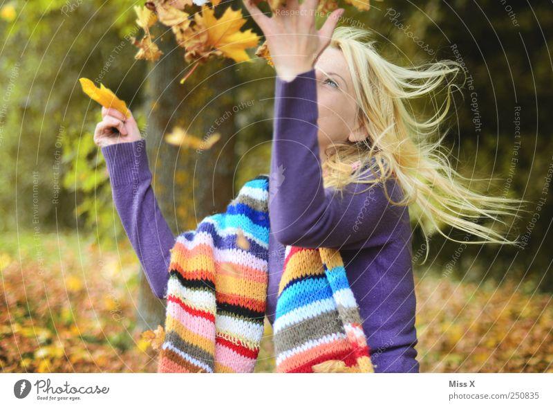 Herbstlich Mensch Jugendliche Baum Freude Blatt Erwachsene Wald Gefühle lachen Garten Freizeit & Hobby fliegen Fröhlichkeit 18-30 Jahre Junge Frau