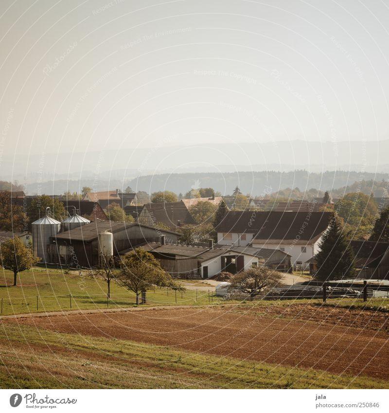 CHAMANSÜLZ | kleines örtle Himmel Natur Baum Pflanze Haus Umwelt Landschaft Gras Gebäude Feld natürlich Bauwerk Dorf Landwirtschaft Forstwirtschaft Grünpflanze