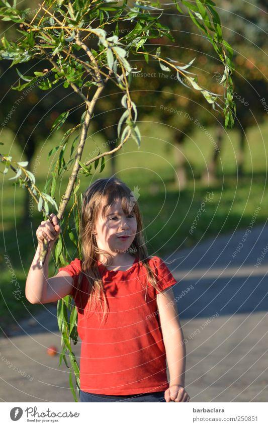 Hexle mit Besen/CHAMANSÜLZ 2011 Kind Natur Jugendliche Pflanze grün Sonne Baum rot Landschaft Mädchen Freude Straße Wiese Wege & Pfade Spielen natürlich