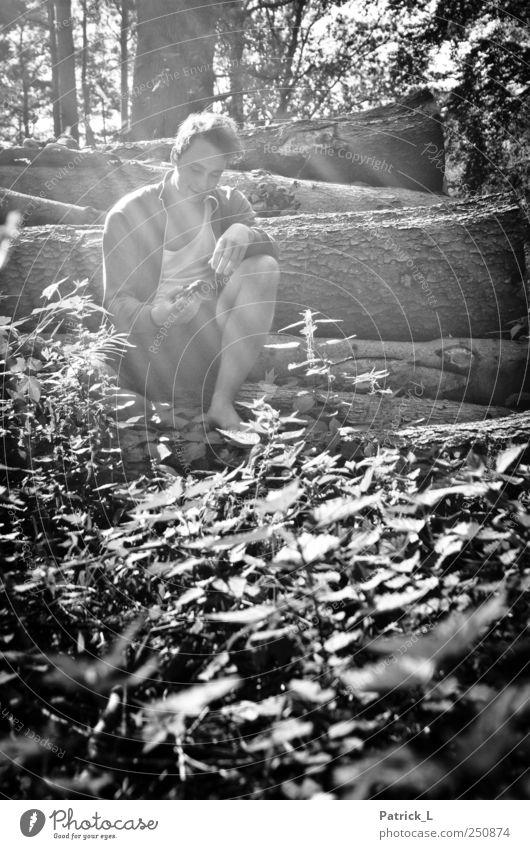 in to the wild Mensch Natur Jugendliche Baum Pflanze Sommer Erwachsene Wald Freiheit Gras Glück Zufriedenheit maskulin Fröhlichkeit Sträucher beobachten