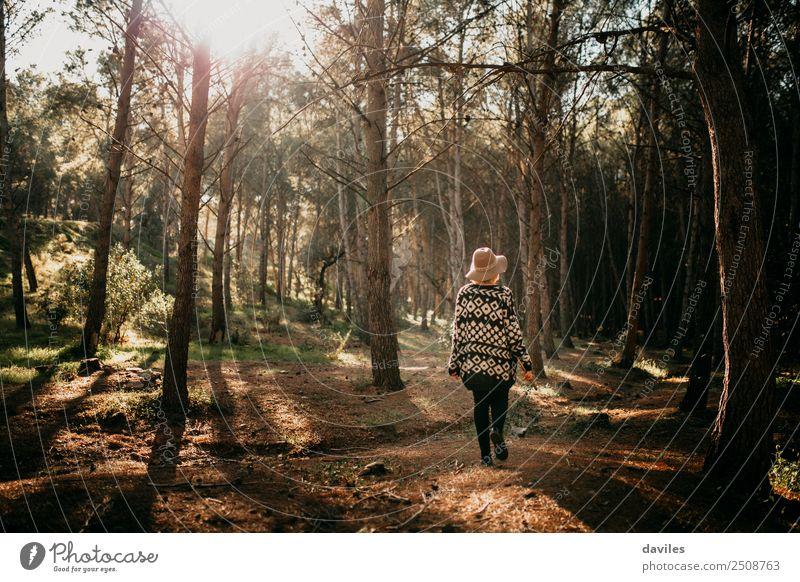 Junge Frau mit Hut macht bei Sonnenuntergang einen Spaziergang im tiefen Wald. Lifestyle Freude Ferien & Urlaub & Reisen Abenteuer Freiheit Sightseeing
