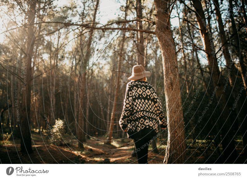 Junge Frau beim Spaziergang im Wald Lifestyle Freude schön Freizeit & Hobby Ferien & Urlaub & Reisen Abenteuer wandern Mensch feminin Jugendliche Erwachsene 1