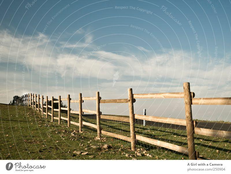 stretch Umwelt Natur Landschaft Himmel Wolken Wetter Schönes Wetter Wind Gras Feld blau gelb Idylle natürlich ländlich Schleier Zaun quer Bayrische Rhön