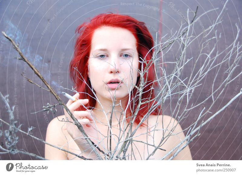 vergangenes. feminin Junge Frau Jugendliche Haare & Frisuren Gesicht 1 Mensch 18-30 Jahre Erwachsene Ast Zweig Mauer Wand rothaarig langhaarig festhalten