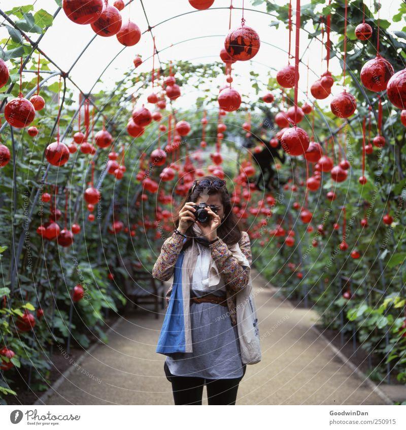 Aus Liebe zum Spiegelschlag. Mensch Junge Frau Jugendliche Erwachsene 1 Umwelt Natur Sommer Wetter Pflanze Sträucher Park Bekleidung Schal Kunststoff Kugel