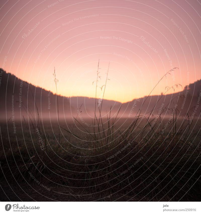 CHAMANSÜLZ | morgenhimmel Umwelt Natur Landschaft Pflanze Himmel Sonnenaufgang Sonnenuntergang Herbst Nebel Baum Gras Feld Berge u. Gebirge natürlich schön