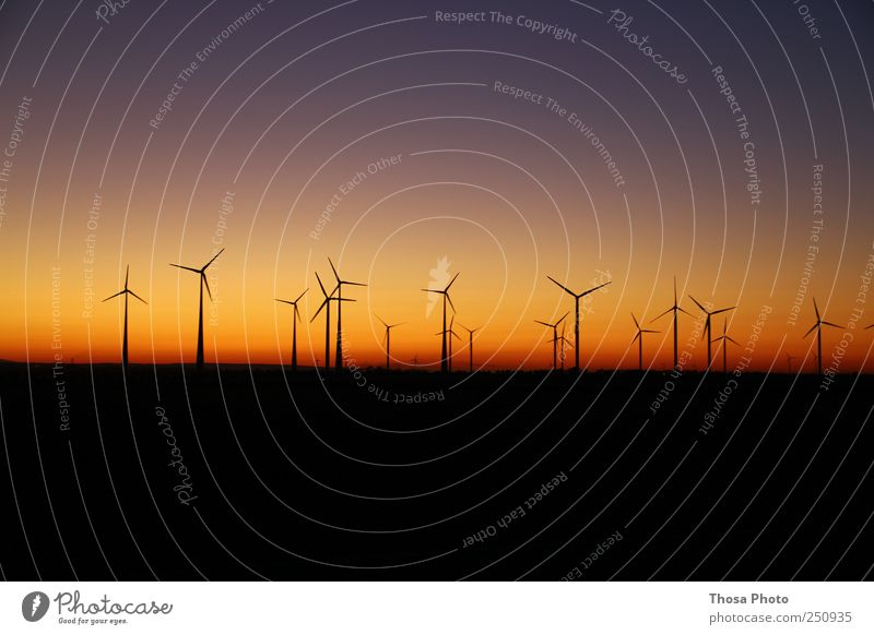 Abenddämmerung Fabrik Maschine Motor Getriebe Fortschritt Zukunft Umwelt Natur Landschaft Luft Klima Park Farbe Windrad Sonnenuntergang Farbfoto Außenaufnahme