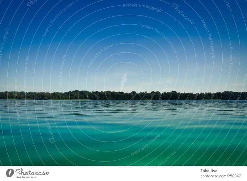 Seenlandschaft Umwelt Natur Wasser Himmel Wolkenloser Himmel Horizont Sommer Schönes Wetter Baum Wald Seeufer einfach Ferne Flüssigkeit Unendlichkeit blau