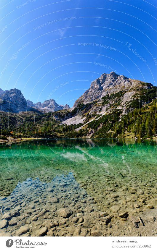 Klare Welten Umwelt Natur Wasser Sommer Schönes Wetter Alpen Berge u. Gebirge Gipfel Seeufer frisch grün Abenteuer Einsamkeit entdecken Erholung Freiheit