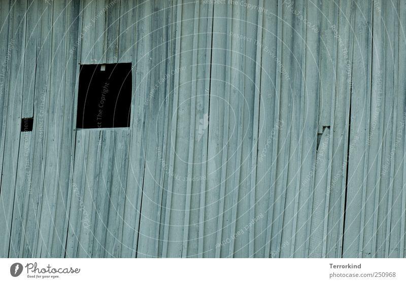 Chamansülz 2011 | i.cant.eat. Haus schwarz dunkel Fenster Holz Fabrik Staub staubig Geisterhaus
