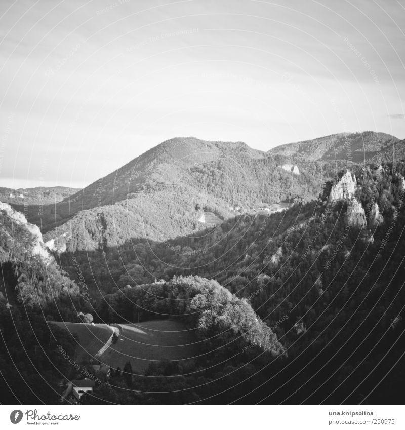 lost in the mountains I Ferien & Urlaub & Reisen ruhig Einsamkeit Ferne Wald Freiheit Berge u. Gebirge Umwelt Landschaft hoch groß Hügel Alpen Unendlichkeit