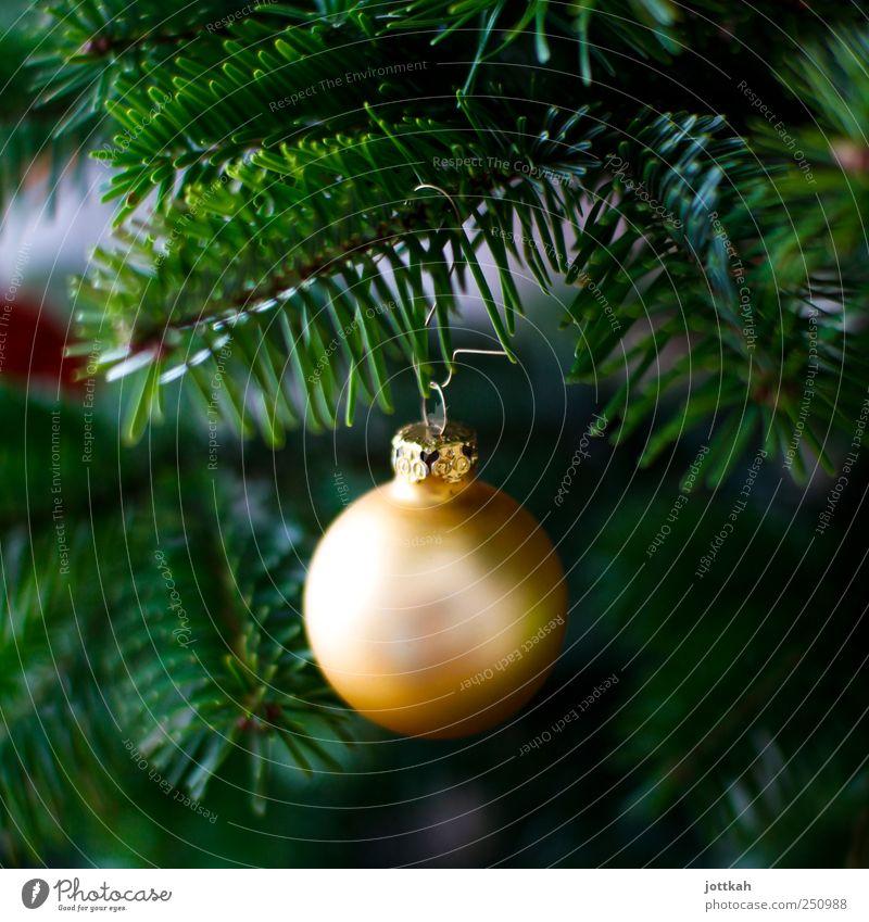 goldene Kugel Dekoration & Verzierung elegant rund schön grün Weihnachten & Advent Weihnachtsbaum Christbaumkugel hängen Tanne Zweige u. Äste Tannennadel
