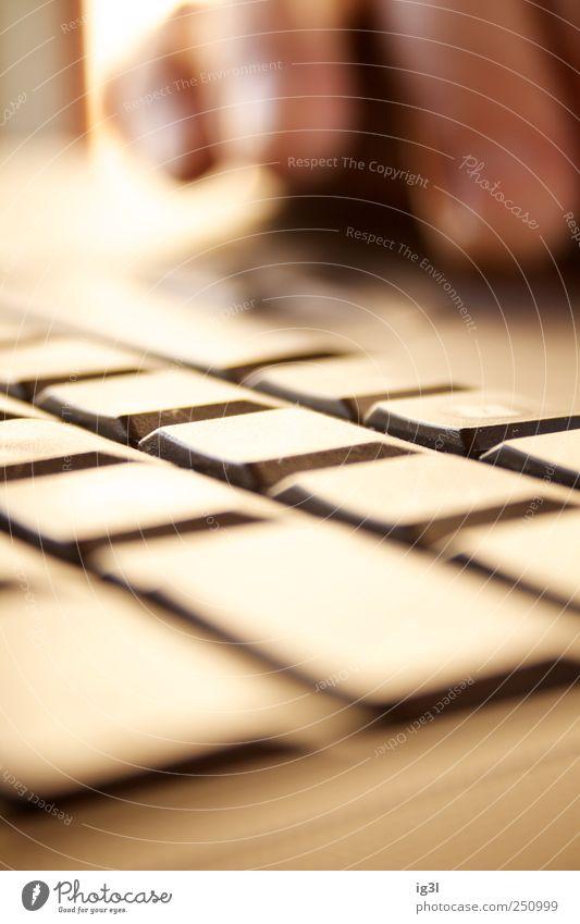 Tastaturzwischenraumbeleuchtung Spielen Business Design Technik & Technologie Beginn Kommunizieren lernen Computer Telekommunikation Finger Industrie Kontakt