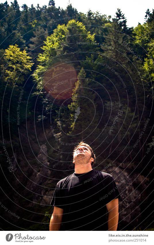 kletter-routen-check Mensch Natur Jugendliche Sommer Erwachsene Wald Berge u. Gebirge Kopf Felsen Ausflug maskulin Abenteuer stehen T-Shirt beobachten Hügel