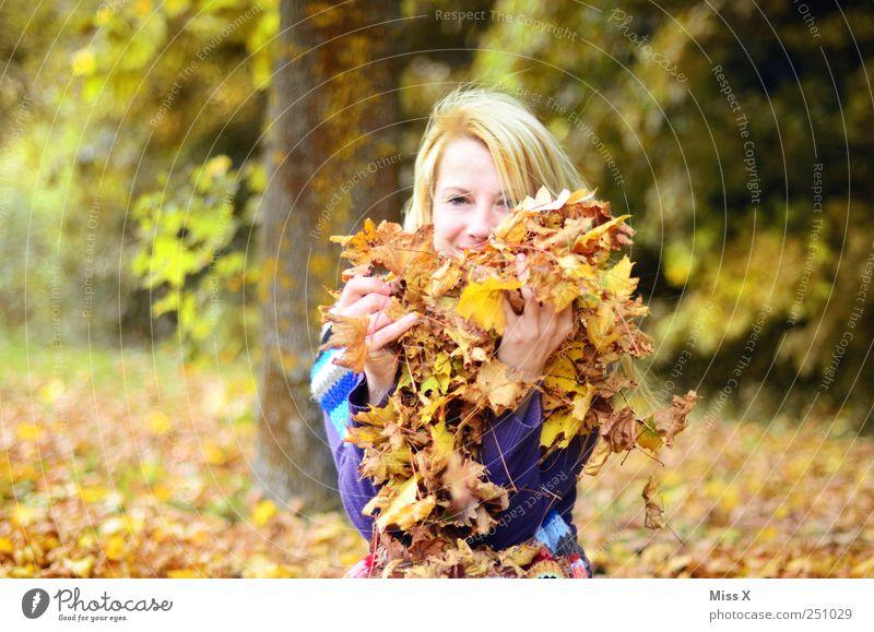 im Laubhaufen Spielen Mensch feminin Junge Frau Jugendliche 1 18-30 Jahre Erwachsene Natur Herbst Schönes Wetter Baum Blatt Garten Park Wald blond werfen