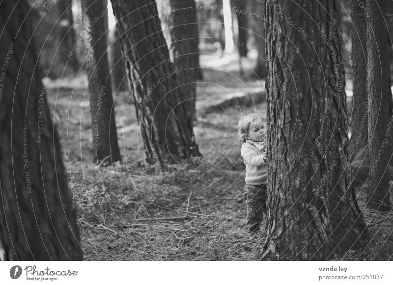 Eckstein Eckstein! Mensch Kind Natur Baum Mädchen Wald Leben Umwelt Spielen grau klein Stimmung Kindheit groß stehen Neugier