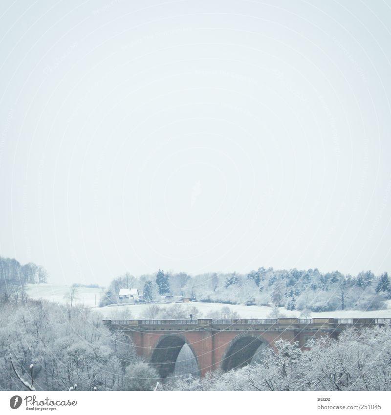 Elstertalbrücke Umwelt Natur Landschaft Urelemente Luft Himmel Wolkenloser Himmel Horizont Winter Schnee Baum Wald Brücke Bauwerk ästhetisch authentisch hell