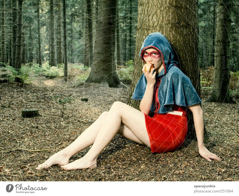 In the Woods of Baskerville Mensch Natur Jugendliche blau schön Baum rot Wald feminin Ernährung Umwelt Landschaft Gefühle Erwachsene Stimmung Mode