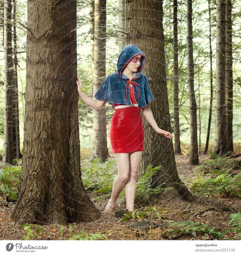 Märchenwald Mensch Natur Jugendliche blau Baum Pflanze rot Wald feminin Landschaft Gefühle Erwachsene Mode warten außergewöhnlich Sträucher