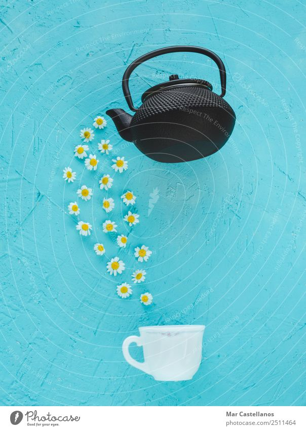 Kamillenblüten aus einer Teekanne Kräuter & Gewürze Behandlung Medikament ruhig Sommer Tisch Gartenarbeit Umwelt Natur Pflanze Blume Blatt natürlich wild gelb