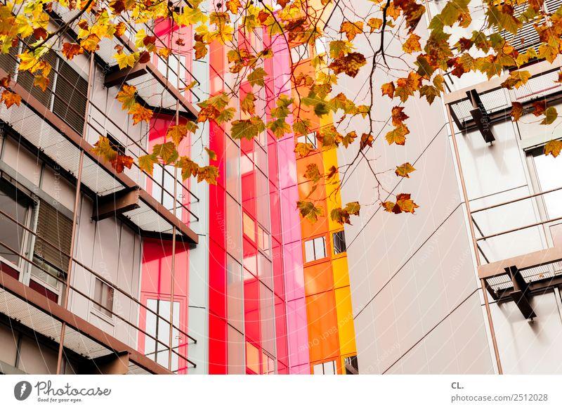 herbst hoch haus Bildung Studium Herbst Blatt Stadt Essen Hochhaus Bauwerk Gebäude Architektur Fassade mehrfarbig Farbe komplex Kreativität Farbfoto