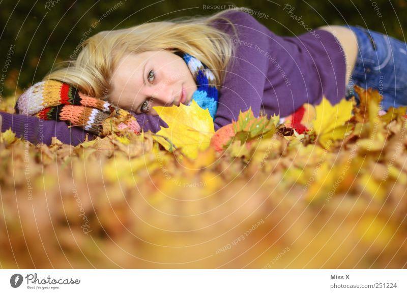 richtig zufrieden Mensch feminin Junge Frau Jugendliche 1 18-30 Jahre Erwachsene Natur Herbst Schönes Wetter Blatt Schal Haare & Frisuren blond liegen Glück