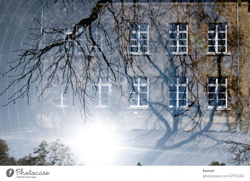 [CHAMANSÜLZ 2011] Von Bäumen umzingelt Umwelt Natur Pflanze Sonne Sonnenlicht Schönes Wetter Baum Ast Zweig Haus Gebäude Mauer Wand Fassade Fenster hell