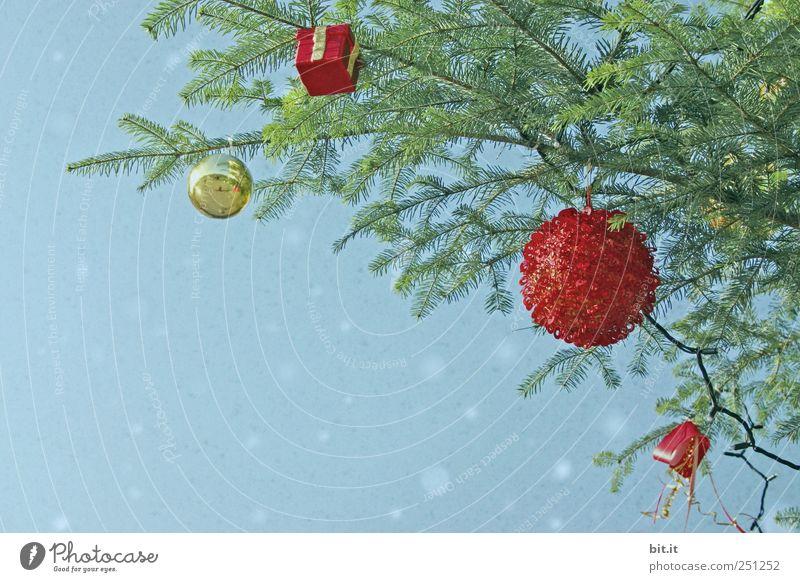 Schon Geschenke gekauft?? Wohnung Umwelt Luft Winter Schneefall Baum Dekoration & Verzierung Schleife Kitsch Krimskrams hängen blau gold grün rot Tradition