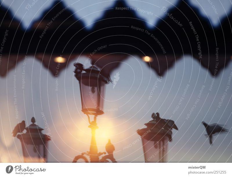 Everyday Life in Venice. träumen Kunst ästhetisch Italien Laterne Taube Fensterscheibe Surrealismus Venedig Verzerrung traumhaft Alltagsfotografie Italienisch Landen Veneto Hotelfenster