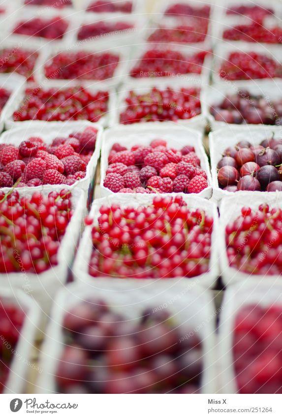 pink rosa rot Ernährung Lebensmittel Frucht frisch süß Ernte lecker Appetit & Hunger verkaufen Beeren Bioprodukte Schalen & Schüsseln saftig sauer