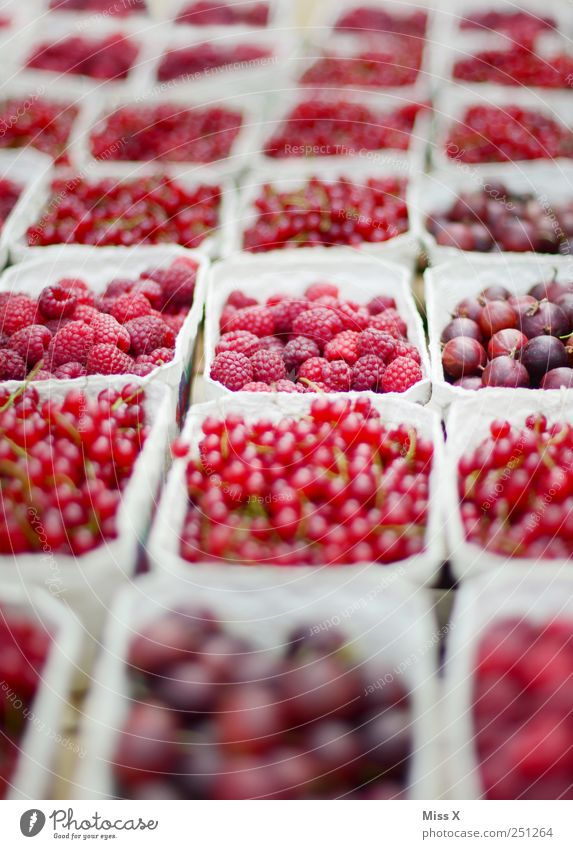 pink rosa rot Lebensmittel Frucht Ernährung Bioprodukte frisch lecker saftig sauer süß Appetit & Hunger Wochenmarkt Obst- oder Gemüsestand Marktstand Obstschale