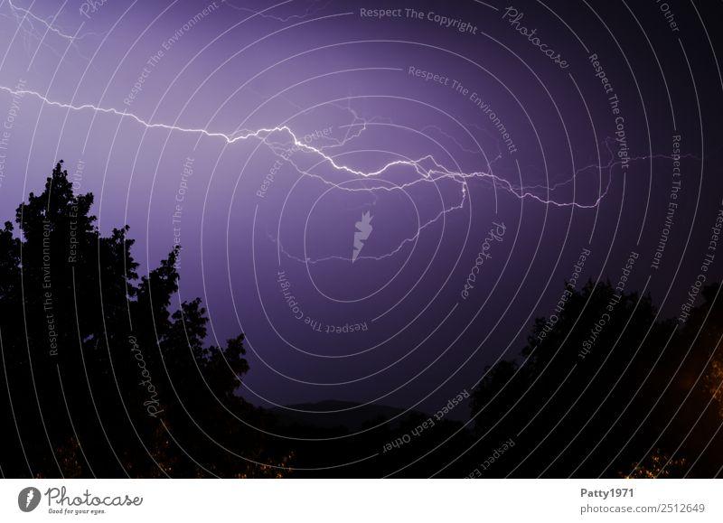 Blitz Umwelt Natur Landschaft Himmel schlechtes Wetter Unwetter Gewitter Blitze Baum Hügel Klima Farbfoto Außenaufnahme Menschenleer Textfreiraum oben